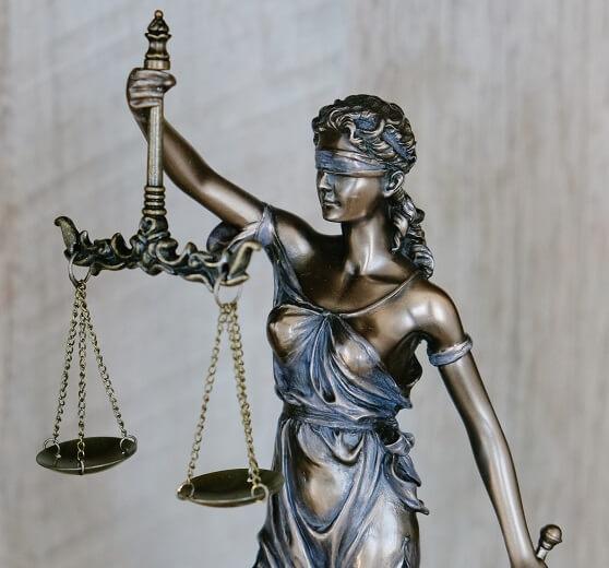law internship